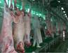 猪羊屠宰生产线