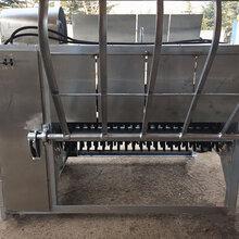 带皮羊去毛机、打毛机生产厂家-潍坊诸城市福瑞达机械厂图片