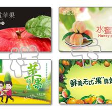 上海浦東農產品提貨系統圖片