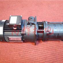 日本泰拉尔TERAL涡流泵NQD-751图片