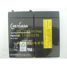 总代理日本GSYUASA电池PE6V3.2