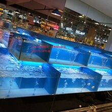 长沙马王堆海鲜鱼池批发价格养海鲜的池子怎么做?图片