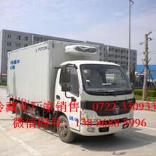 茂名市上蓝牌福田国四奥铃冷藏车价格运输冰鲜海产品的冷藏车图片