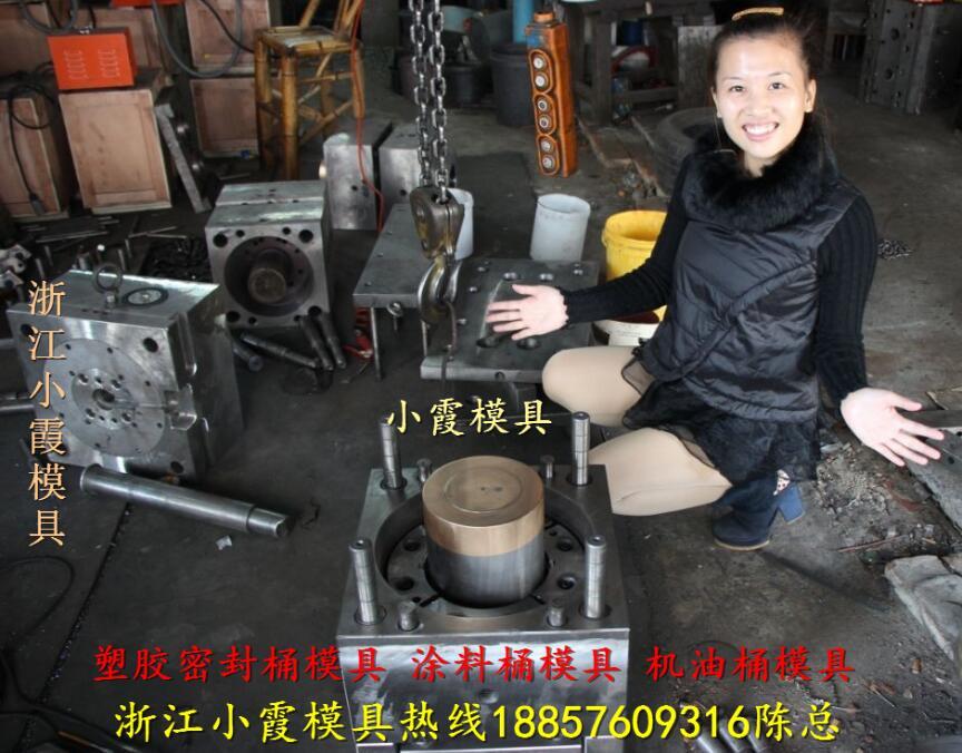3升高端液体塑料桶模具,3升高档润滑油桶模具,3升高档乳胶漆桶模具