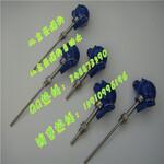 WRNK-231营口铠装热电偶厂家/芜湖直径8mm总长L500mm热电偶价格图片