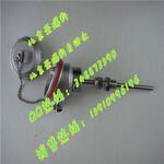 WRNK-232K型铠装热电偶图片
