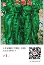 大果龙椒螺丝椒辣椒种子图片