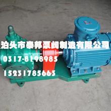 2CY-1.1/1.45齿轮泵/-KCB齿轮油泵经久耐用