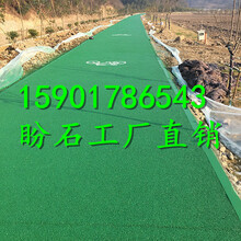 厂家盼石供应云南腾冲彩色透水混凝土路面的配制和施工