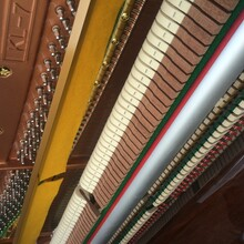 負責鋼琴調整的師傅專業從事鋼琴調整已有二十多年經驗圖片