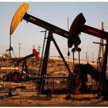 供应纬德原油代理,9个点回本