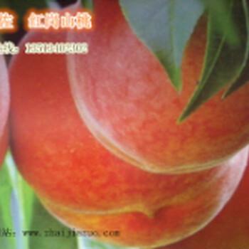 最好的桃子