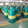 廊坊衡水BQS1000-30-160/B煤仓清理电动高压排污泵