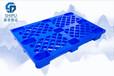 倉儲設備塑料地堆板賽普廠家直銷