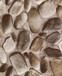 FABOIEFaboie墙纸生产加工厂家壁纸品牌公司官网版本样本样册
