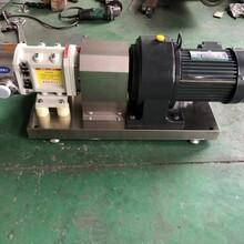 不锈钢材质双机械密封的LX-9凸轮转子泵图片