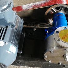 廠家直銷上海-不銹鋼材質NCB-30/0.3轉子泵-甘油泵-內齒泵圖片