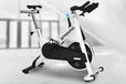 爱康电磁控动感单车智能健身车家用14718