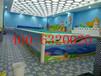 湖北十堰亚克力儿童游泳池生产厂家高配置泡泡彩灯冲浪儿童游泳池