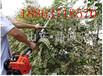 园林工具高枝锯,高杆力锯,高枝绿篱剪,多功能园林工具