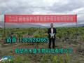 有机肥多少钱一吨有机肥制作方法有机肥生产工艺鹤壁市禾盛生物1393928-2663图片