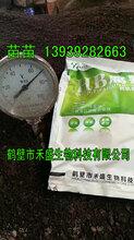 宁夏有机肥生产厂家有机肥专用菌种微生物腐熟剂鹤壁市禾盛生物1393928-2663