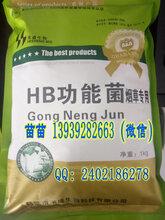 禾盛鹤壁发酵菌快速发酵菌高温发酵菌有机肥腐熟剂图片1393928-2663