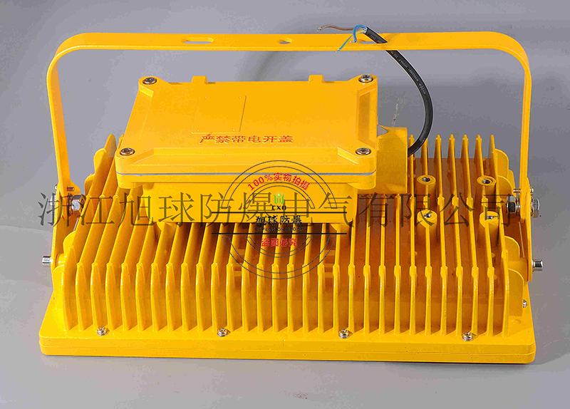 冷機房防爆道路燈100W,防爆吸頂燈HRT82