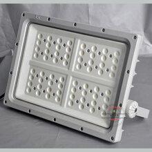 XQL8100防爆路灯灯具170W图片