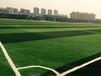 青岛博翔远五人制足球场人造草坪BDS50-105J加筋单丝,专业的选择!