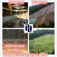 开平市地质灾害护坡施工队、鹤山山坡挂网喷浆、恩平边坡支护绿化图片