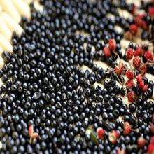 山西杜梨籽,苹果籽,毛桃核,山桃核,海棠籽,花椒籽图片