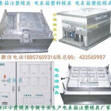台州模具之乡,新国网单相二位电表箱塑料模黄岩公司