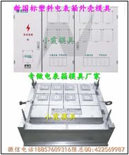 浙江模具之都,新国网单相电表箱塑料模具小霞公司