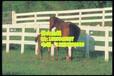 马场护栏用于草园围马、骑术中心外围、俱乐部等