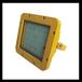 GCD615防爆固态照明灯