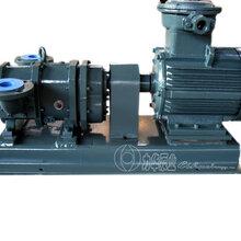 厂家供应不堵塞自吸转子泵图片