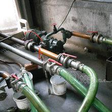 汽油泵柴油泵-力華輕質油專用泵圖片
