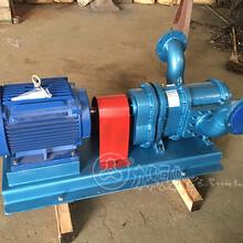 無堵塞螺旋轉子泵供應商-力華泵業圖片