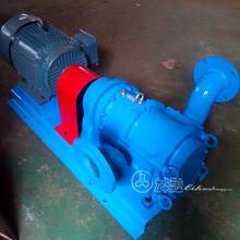 廠家直供生活污水泵耐腐蝕泵排污泵無堵塞高自吸圖片