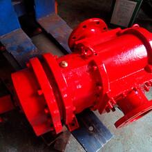 供應力華LH150-145-1.2凸輪轉子泵圖片