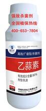 供应黄龙病特效杀菌剂80%乙蒜素褐斑病特效杀菌剂