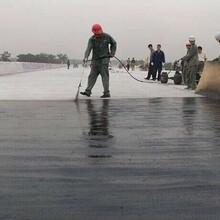 APM-100二阶反应型防水涂料多少钱一个方高速路桥路防水FYT-2桥面防水图片