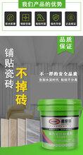 强力瓷砖粘结剂粘结效果好瓷砖背胶报价图片