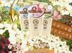 香水洗發水代加工洗護OEM貼牌生產一站式采購