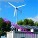 厂家直销晟成3千瓦小型并网家用风力发电机组环保微风发电