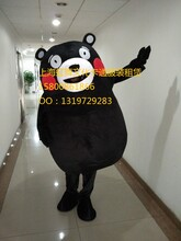 上海Kumamon卡通服装出租熊本熊人偶服装出租