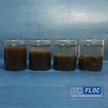 聚丙烯酰胺电镀废水处理,电镀污水处理絮凝剂