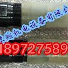 进口现货SL10GB1-4X图片