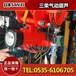 日本三荣气动葫芦,VLX25LC气动葫芦,保质一年